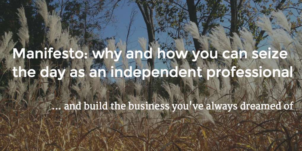 #7 Manifesto: why and how you can seize the day as an independent professional