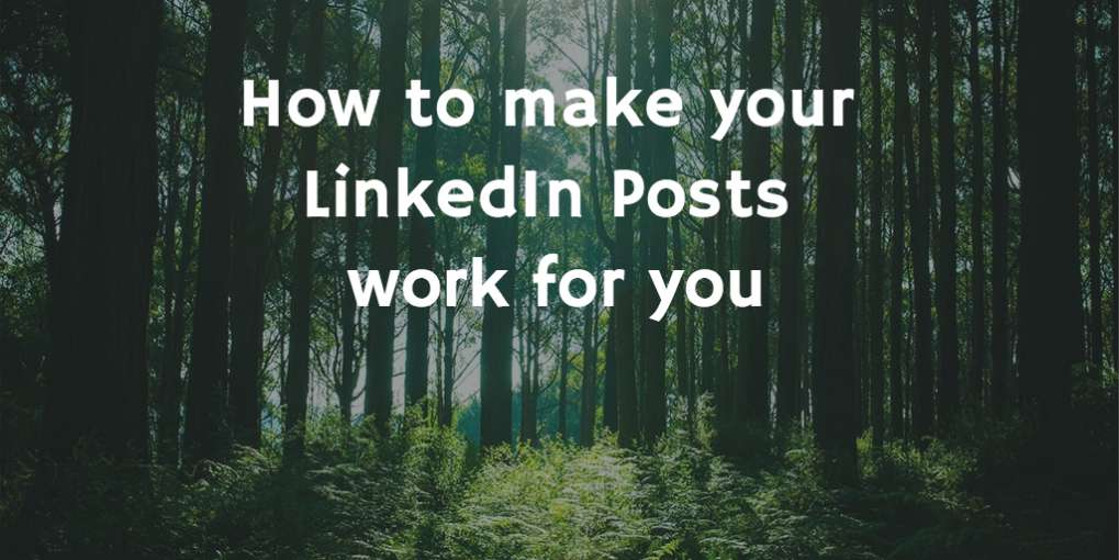 #21 How to make your LinkedIn Posts work for you